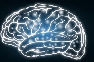 Control total de la epilepsia desde el cerebro