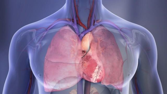 El exceso de riesgos cardiovasculares fue más pronunciado en las mujeres más jóvenes con diabetes tipo 2 y el exceso de riesgo disminuyó significativamente en aquellas personas que desarrollan diabetes mucho más tarde en la vida.