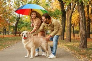 La temporada de lluvias inicia tentativamente en junio y sacarlo en estos días puede ser una experiencia.