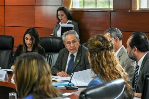 A esta sesión asistieron representantes del Instituto Mexicano del Seguro Social (IMSS), del Instituto de Seguridad y Servicios Sociales de los Trabajadores del Estado (ISSSTE), de la Secretaría de Educación Pública (SEP), de la Secretaría de la Defensa Nacional (SEDENA), de la Secretaría de Marina (SEMAR), del Instituto Nacional de las Mujeres (INMUJERES), de Petróleos Mexicanos (PEMEX), del Instituto Nacional de Salud Pública (INSP), de la Comisión Nacional de Protección Social en Salud, de la Comisión Federal de Protección contra Riesgos Sanitarios (COFEPRIS), del Centro Nacional para la Prevención y Control del VIH y SIDA, del Instituto Nacional de Migración (INM), del Instituto Mexicano de la Juventud (IMJUVE), del Fondo de Protección a las Naciones Unidas en México (UNFPA), así como de las Secretarías Estatales de Chiapas, Chihuahua, Tlaxcala, Tamaulipas y San Luis Potosí y de diversas organizaciones de la sociedad civil, entre otros.