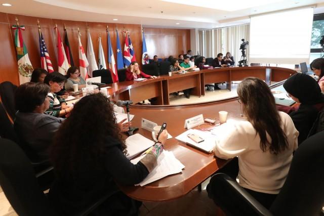 Segunda Reunión Del Grupo De Trabajo Del Mecanismo De Seguimiento Al Cumplimiento De La Convención Para La Eliminación De Todas Las Formas De Discriminación Contra La Mujer 17 de julio de 2019.