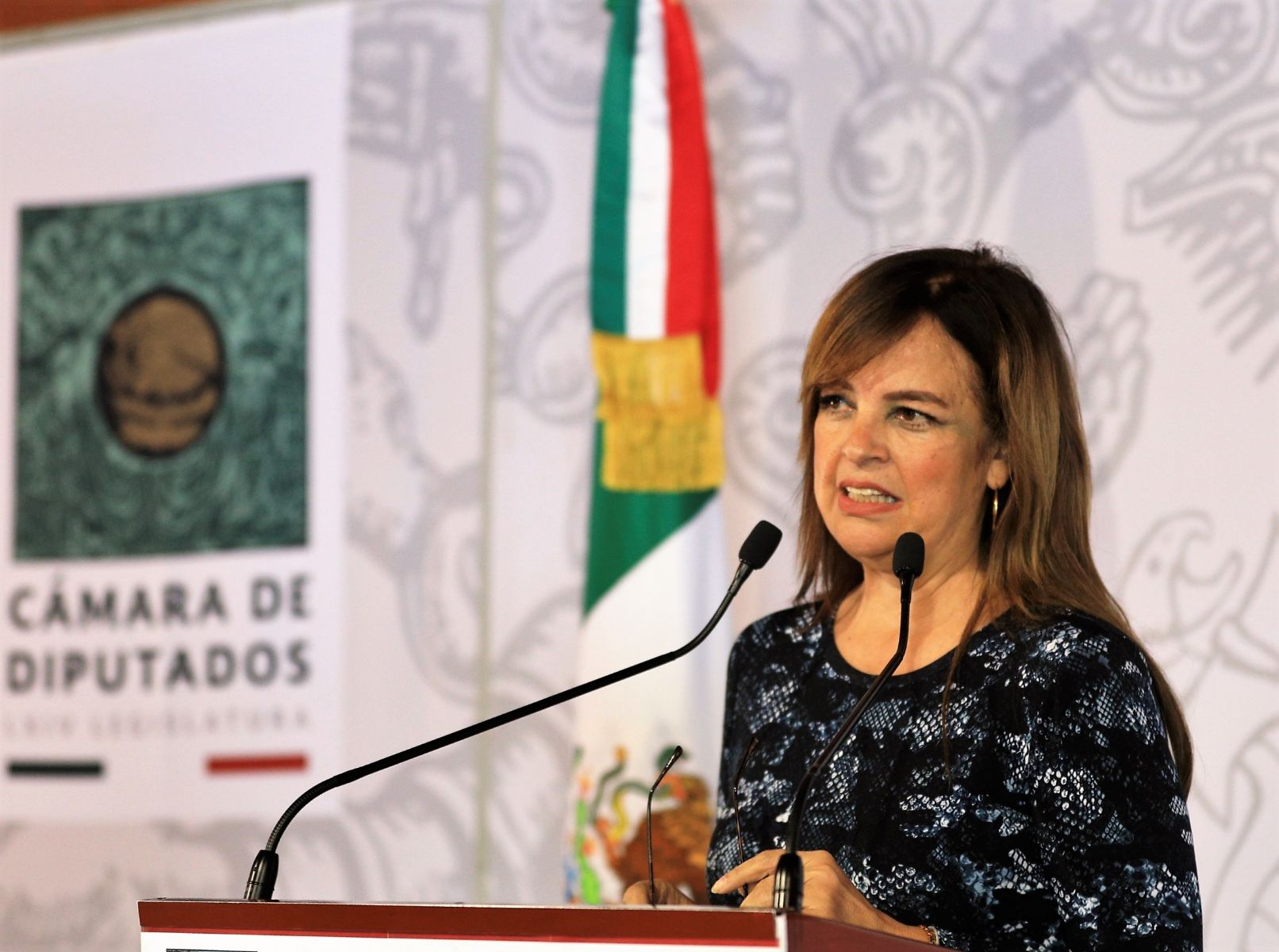 diputada Lorena Villavicencio Ayala