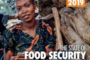 Para que nuestra visión transformadora sea favorable a los pobres e incluyente, debemos integrar las preocupaciones de seguridad alimentaria y nutrición en la reducción de la pobreza los esfuerzos para aprovechar al máximo las sinergias entre la erradicación de la pobreza, el hambre, la inseguridad alimentaria y la malnutrición. También debemos asegurarnos de que reducir las desigualdades de género y la exclusión social de los grupos de población sea el medio o el resultado de mejorar la seguridad alimentaria y la nutrición.