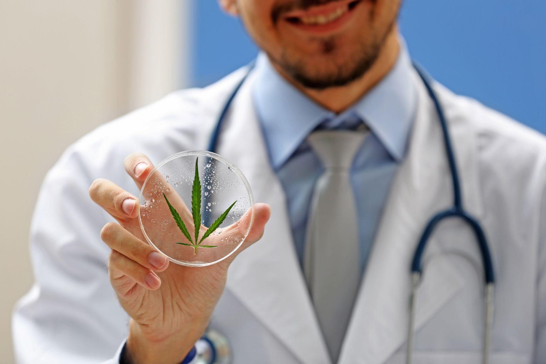 Medico sosteniendo un contenedor con una hoja de cannabis
