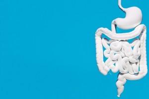 Para cuidar nuestra salud intestinal es necesario que las personas adopten buenos hábitos alimenticios, asociados a una buena actividad física.