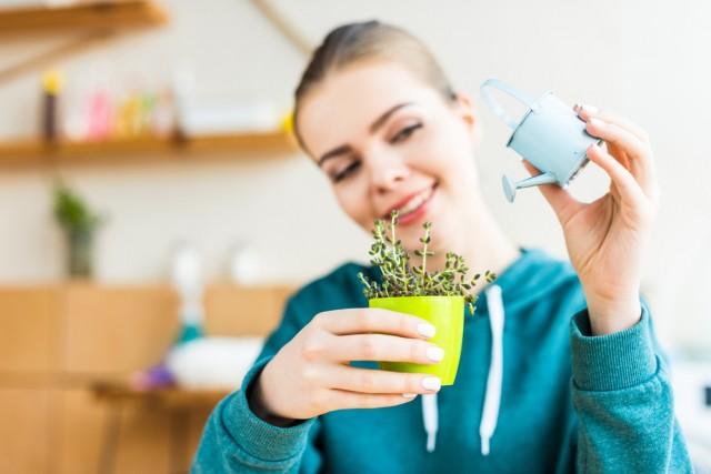 """Una de las mejores formas de mantener un hogar """"sano"""" es ventilar nuestra casa u oficina de manera regular."""