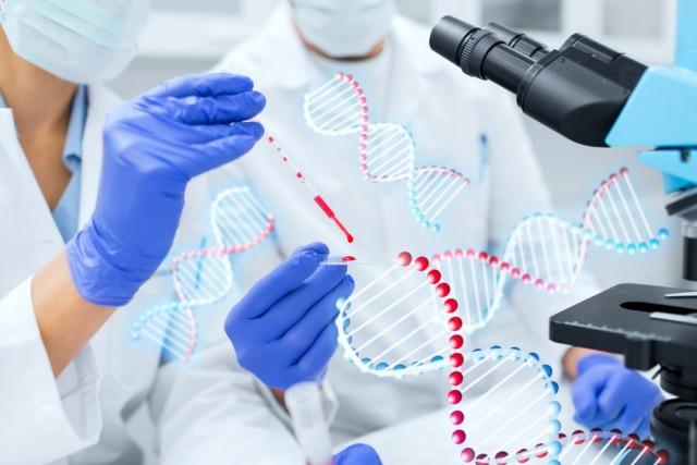La investigación ha permitido identificar la existencia de factores ambientales y genéticos que propician el desarrollo de cáncer.