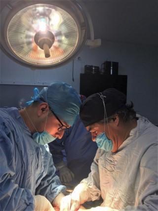 UMAE 1 del IMSS en Guanajuato procura hígado que será trasplantado como urgencia nacional