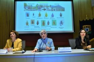 UNAM-20191009-Enfermedad-de-chagas