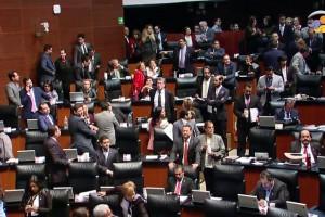 Rosario Piedra Ibarra es electa como presidenta de la CNDH por el Senado