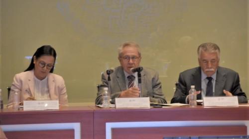 Primera Sesión Extraordinaria 2020 del Consejo de Salubridad General (CSG)
