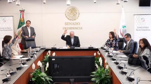 Comisión de Salud del Senado de la República
