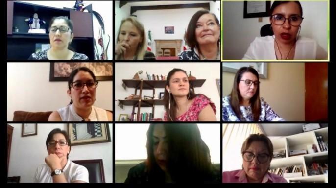 """mesa de trabajo virtual """"Operación del Programa de Apoyo para Refugios Especializados para Mujeres Víctimas de Violencia de Género, sus Hijas e Hijos, desde el Indesol"""""""