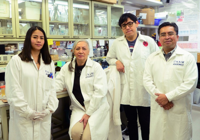 Equipo de trabajo del Instituto de Investigaciones Biomédicas (IIBm) y en el Instituto de Ciencias Físicas (ICF) de la UNAM