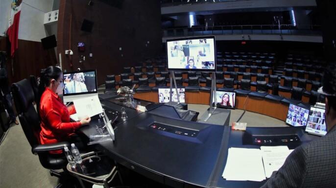 Sesión a distancia de la Comisión Permanente, del 20 de mayo de 2020
