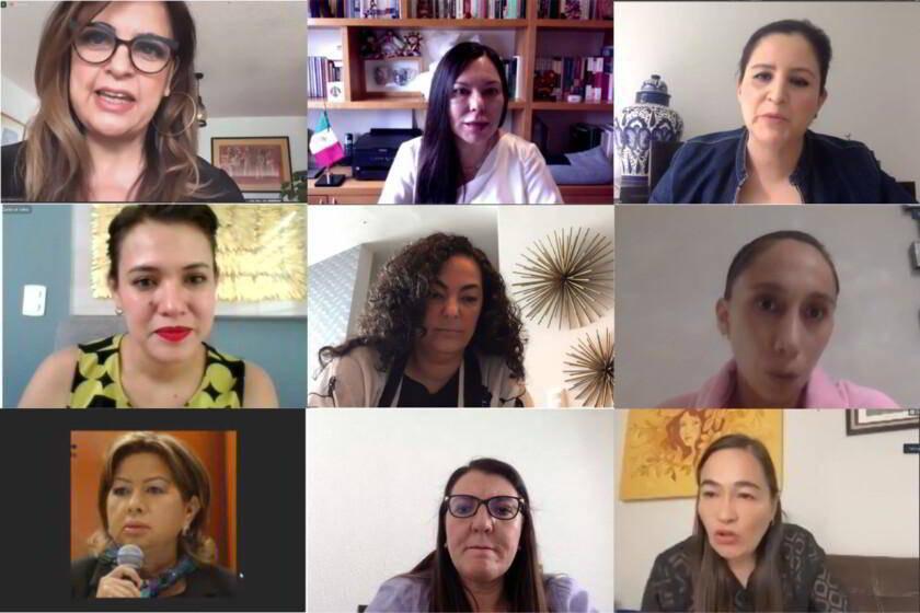 Video conferencia Grupo de Trabajo Plural por la Igualdad Sustantiva