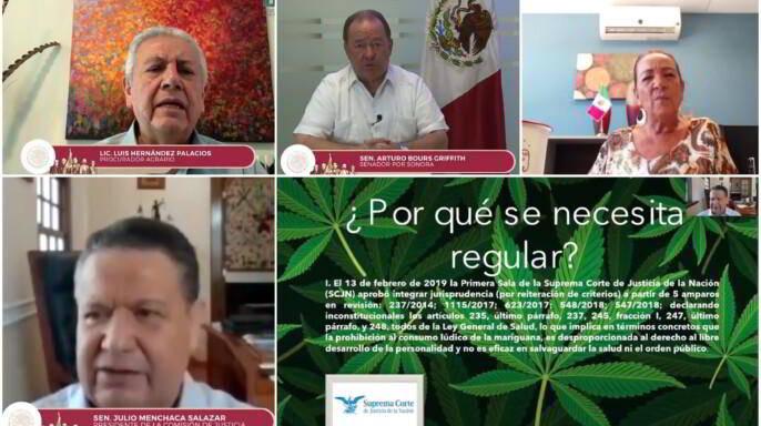 Videoconferencia Mariguana y el Campo Mexicano