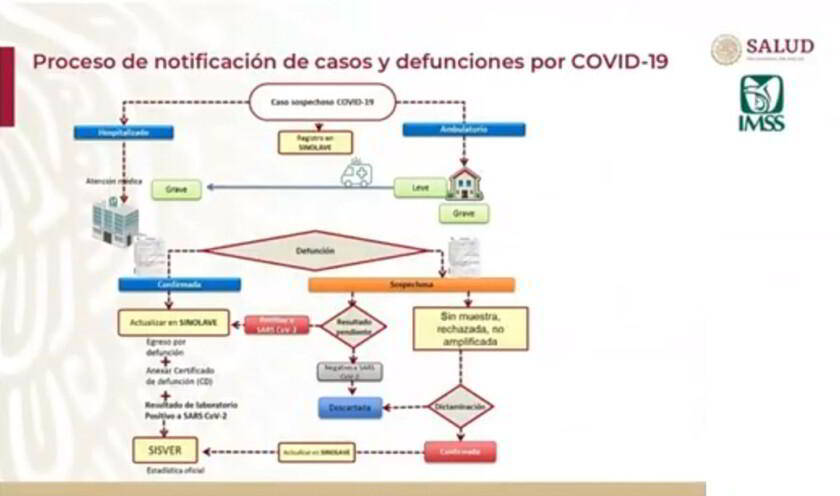 Gráfica de proceso de notificaciones de casos y defunciones en el IMSS