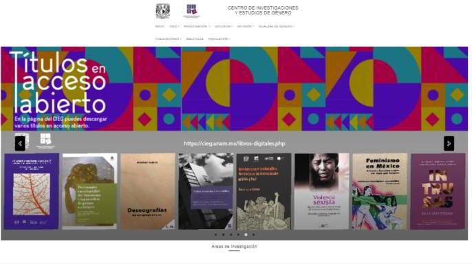 Pantalla inicial de la plataforma Registro de Especialistas en Estudios de Género y Feminismo (REEGyF)