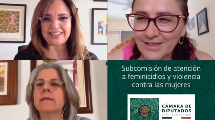 """Conversatorio virtual """"Por los derechos humanos de las niñas y niños, no al Pin Parental"""""""