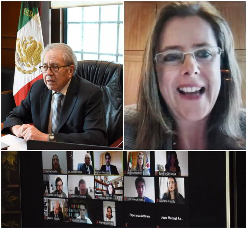Encuentro virtual con la embajadora del Reino Unido de la Gran Bretaña en México, Corin Robertson