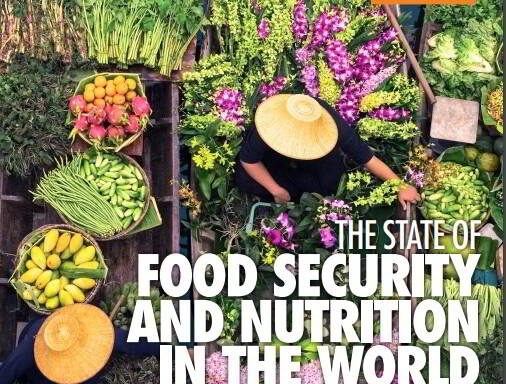 "Portada ""The State of Food Security and Nutrition in the World 2020"""