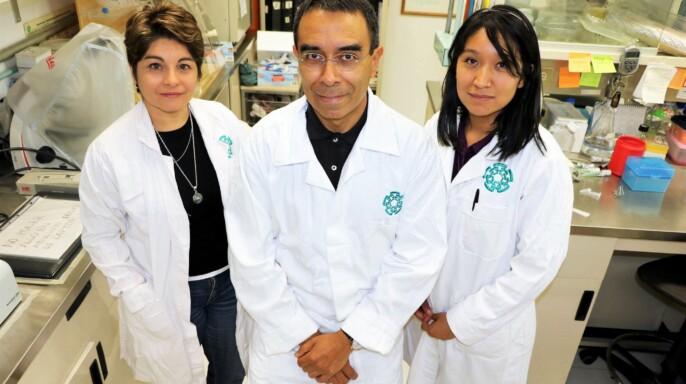 Grupo de investigación encabezado por Jaime García Mena