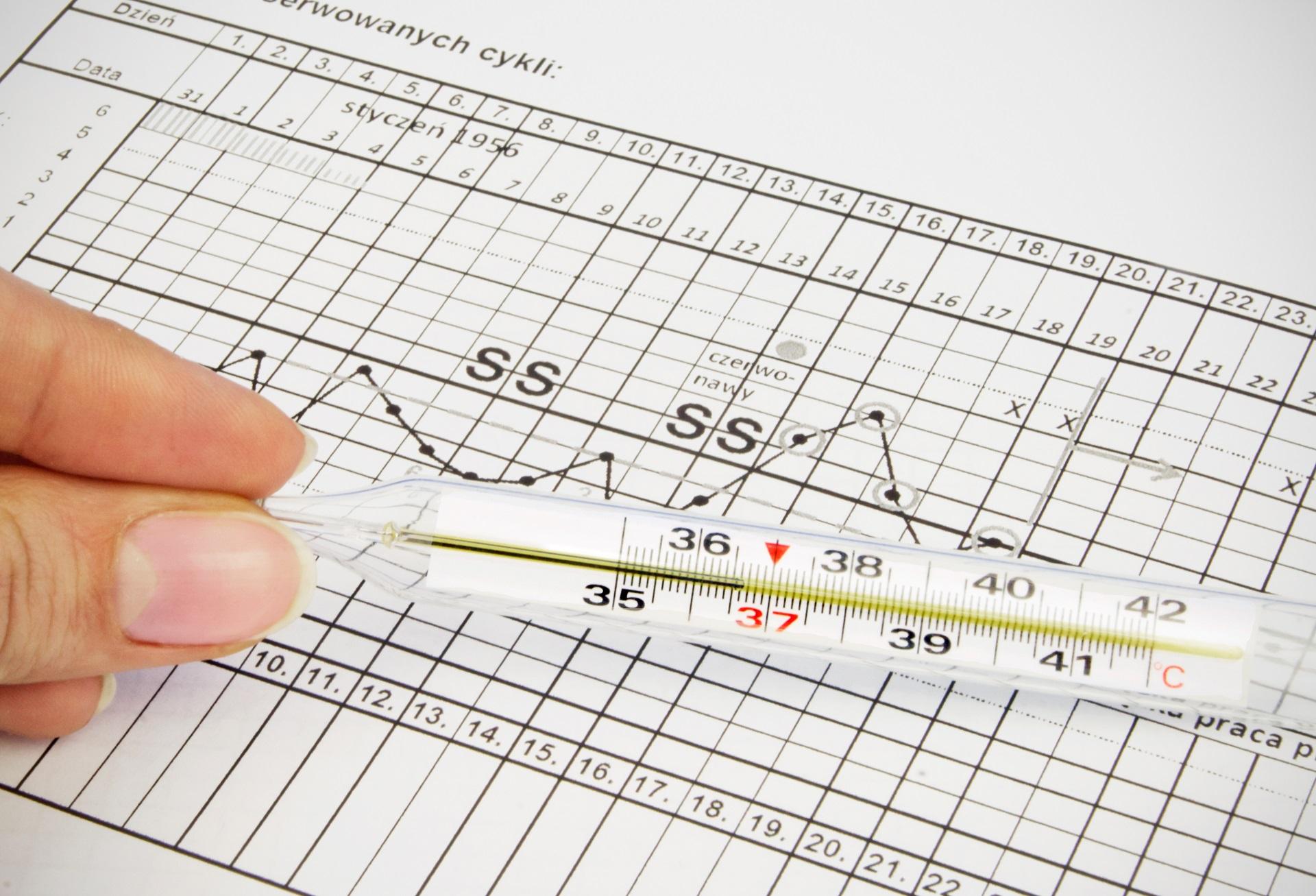 Termómetro clínico localizado en la tabla de fertilidad