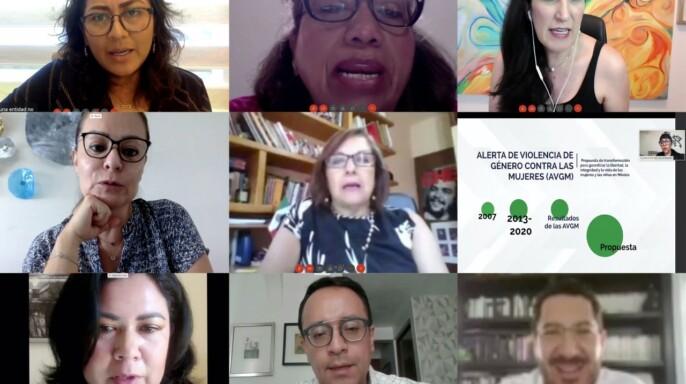Videoconferencia Reunión a distancia de la Comisión Para la Igualdad de Género