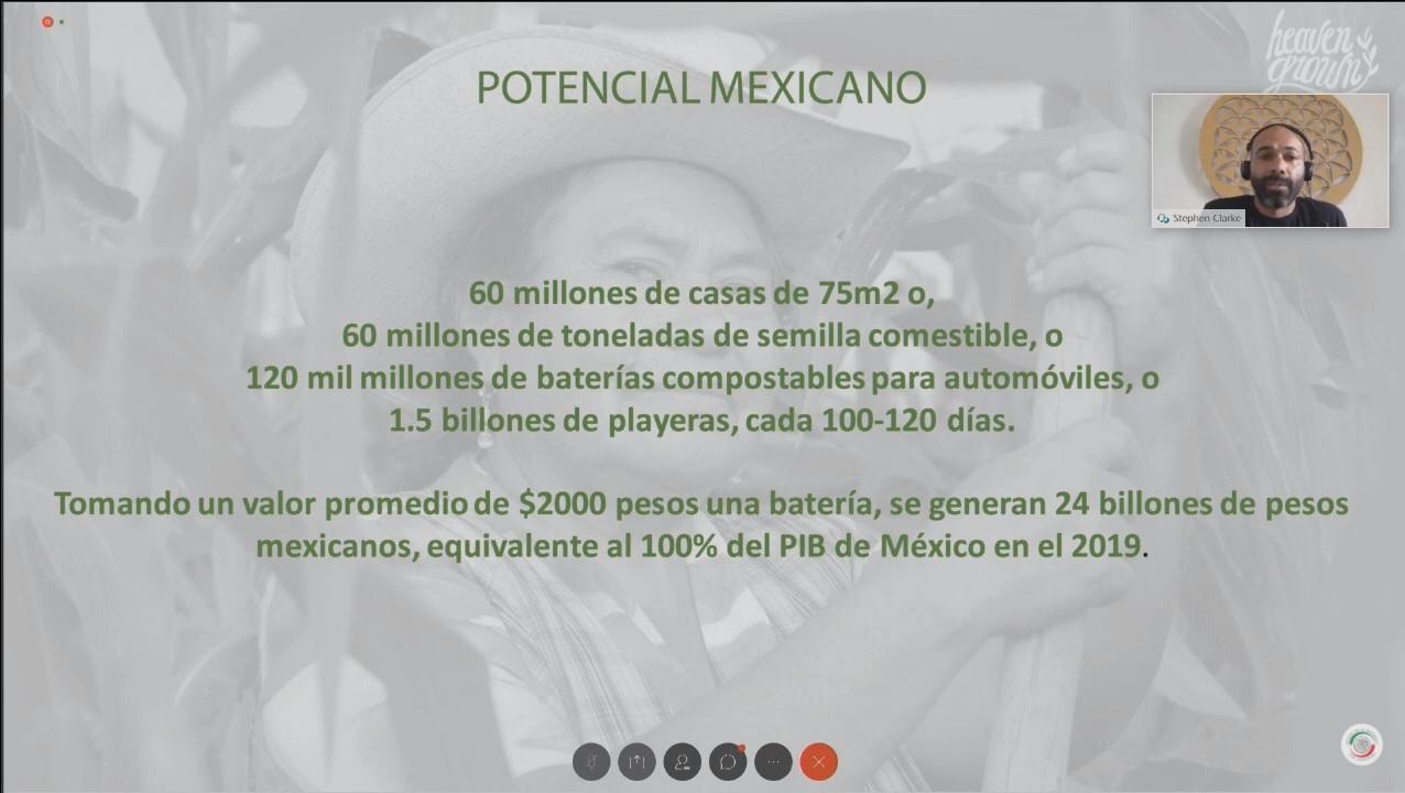 Potencial mexicano