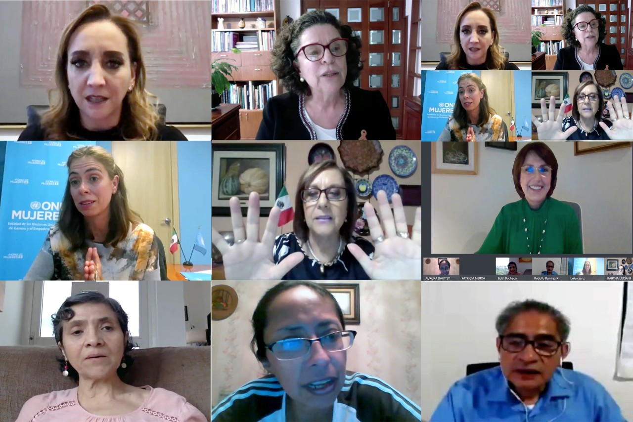 """Webinar del libro: """"Un diagnóstico de los servicios públicos de cuidado en México. Análisis demográfico, presupuestal y legislativo"""""""