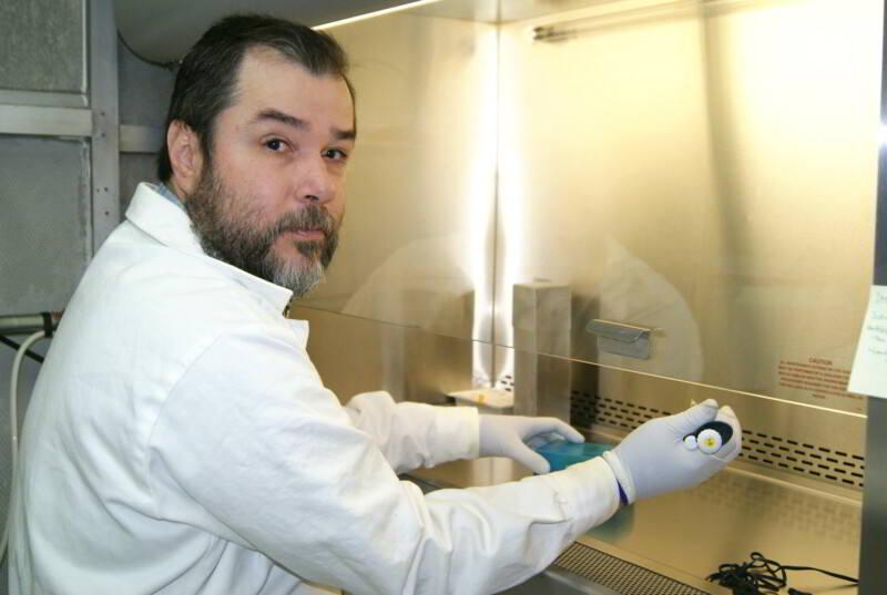 Dr. Luis Marat Alvarez Salas - Genética y Biología Molecular