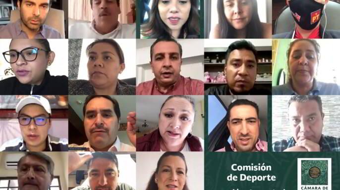 videoconferencia de la comisión de deporte de la Cámara de Diputados