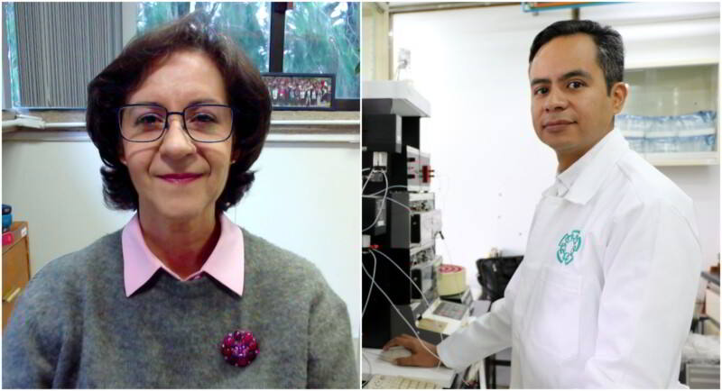 Claudia González Espinosa y Edgar Morales Ríos, investigadores del Centro de Investigación y de Estudios Avanzados (Cinvestav)