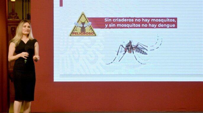 directora de Vigilancia Epidemiológica de Enfermedades Transmisibles, Santa Elizabeth Ceballos Liceaga
