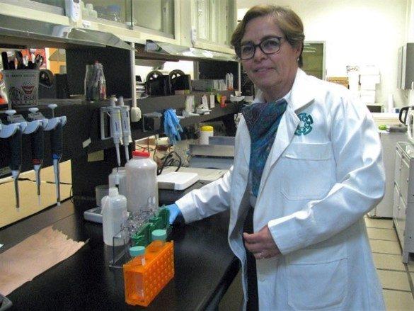 Gabriela Rodríguez Manzo, investigadora del Departamento de Farmacobiología del Cinvestav Unidad Coapa