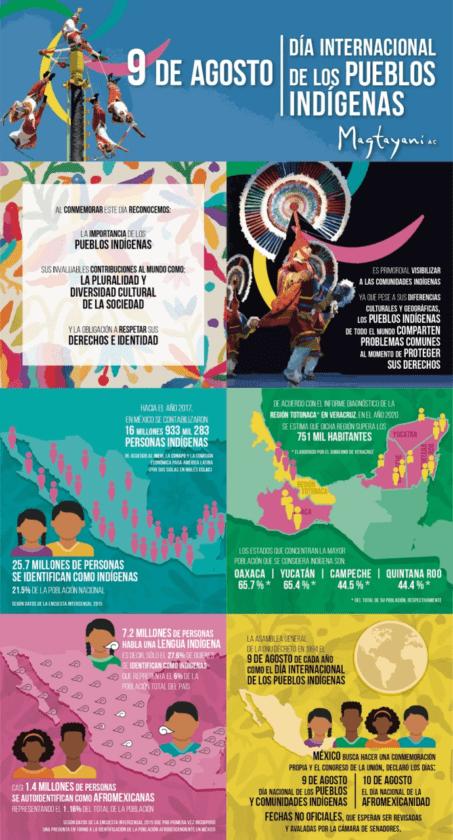 Infografía Pueblos Indígenas